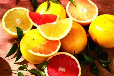 The Best Varieties of Citrus in Florida Make the Best Gifts