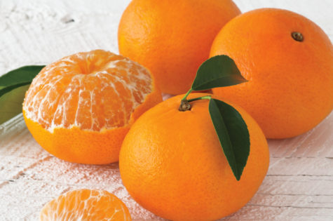 Why Navel Oranges are the Best Gift For Your Loved Ones