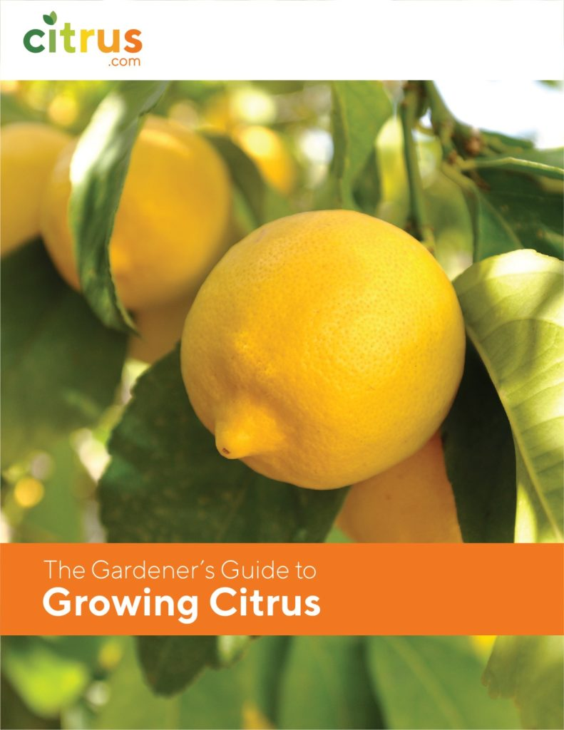 The Gardner's Guide to Growing Citrus